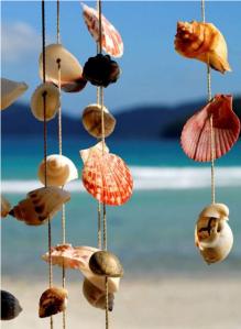Colgante conchas