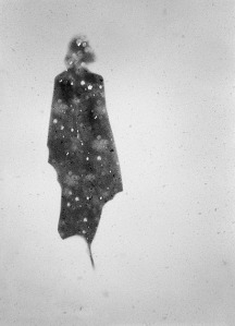 Silent Traces Donata Wenders.jpg 2